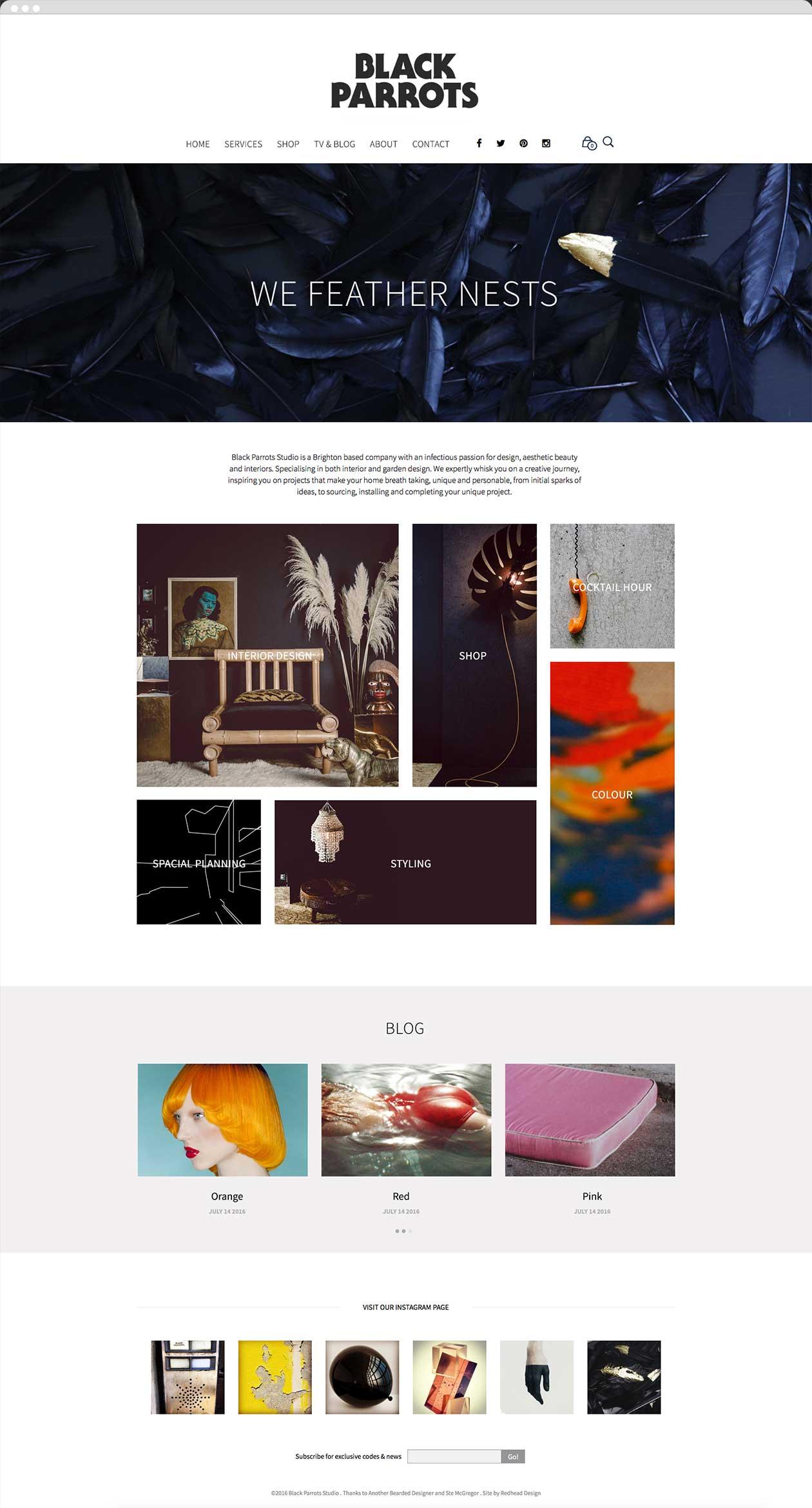 Black Parrots home page website design screen